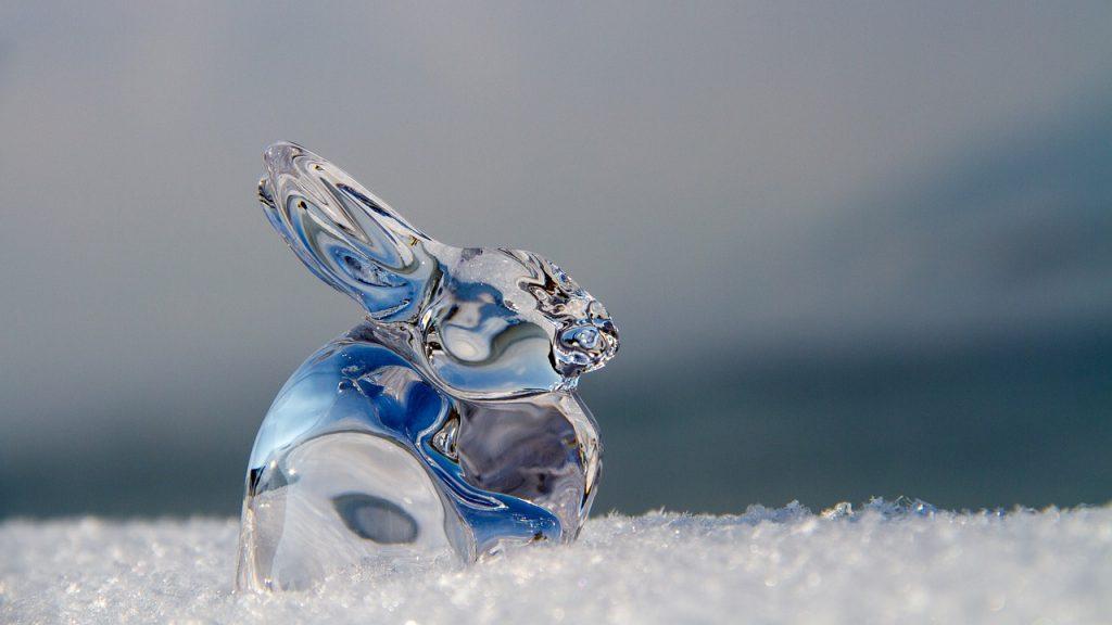 うさぎの氷